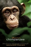 Chimpanzee 2012 dvd