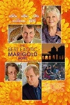 The Best Exotic Marigold Hotel 2011 dvd